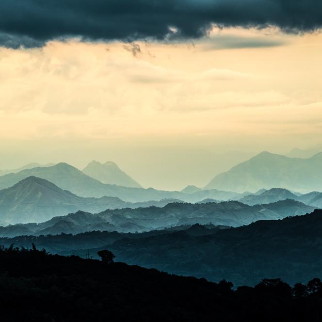 montañas y cafe6